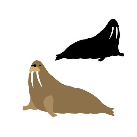 hardy: adult walrus illustration black silhouette set