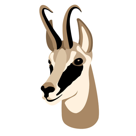 roedeer head face flat style  イラスト・ベクター素材