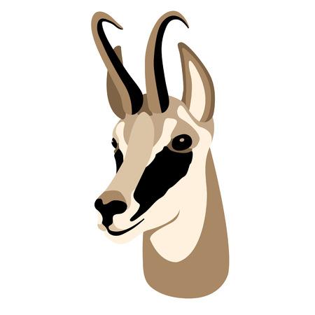 roedeer head face flat style Illustration