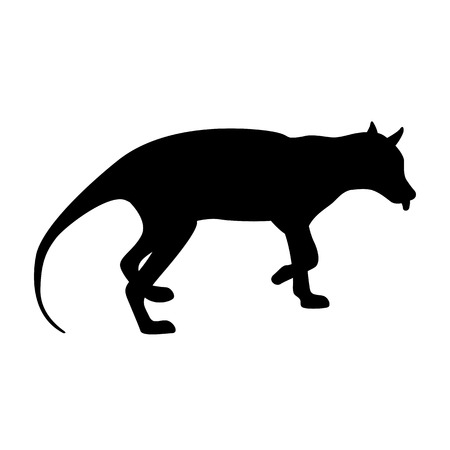 Tiger tasmanian illustration black silhouette Çizim