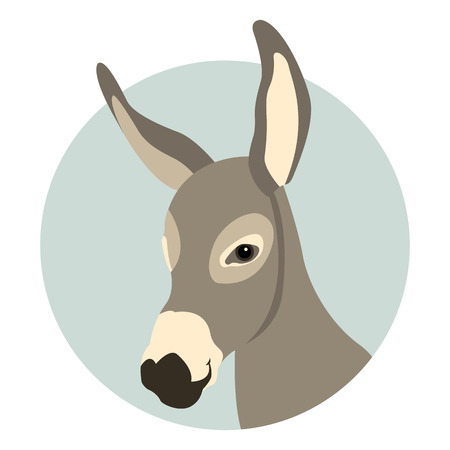 donkey head face vector illustration style Flat