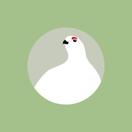 Partridge polar vector illustration style Flat Imagens - 74063366