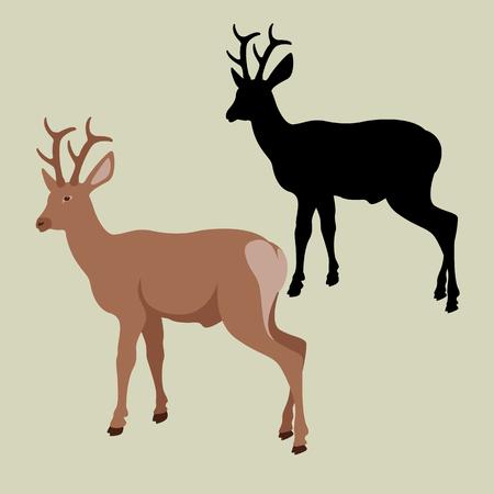 Deer vector illustration style Flat black silhouette Illustration