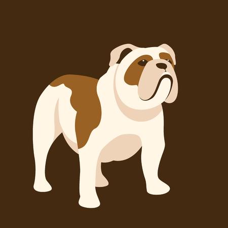 A Bulldog vector illustration style Flat side
