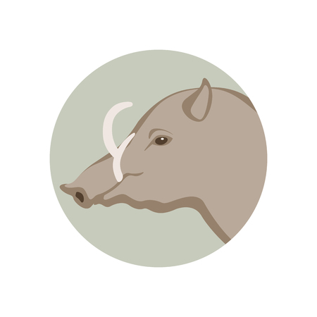 warthog head vector illustration style Flat Illustration