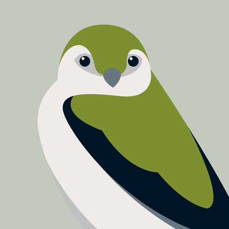 Violet green swallow vector illustration style Flat