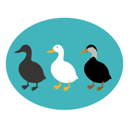 Duck set vector illustration style Flat black silhouette