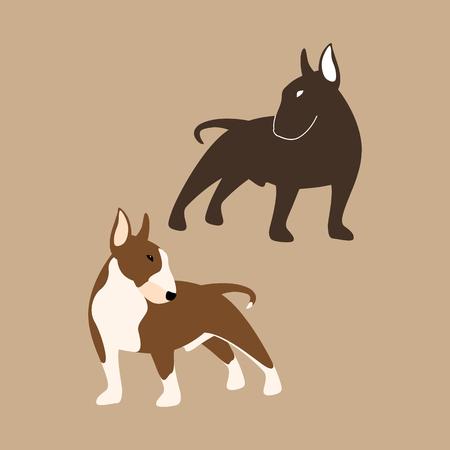 Bull Terrier vector illustration style Flat set