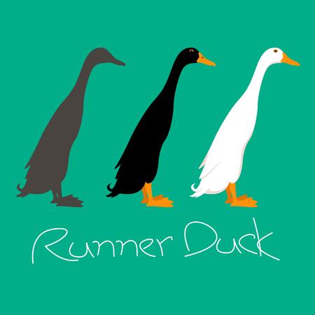 Runner duck vector illustration style Flat side profile Illustration