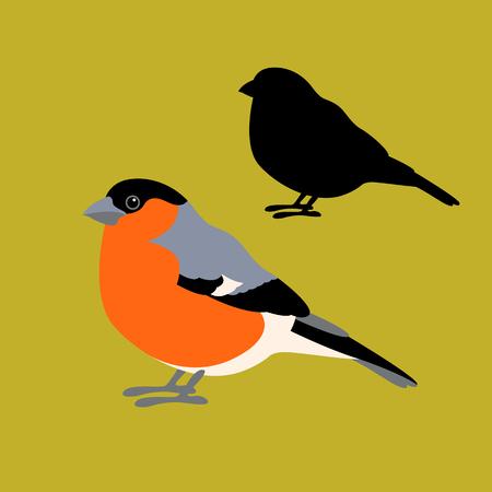 Bullfinch bird vector illustration style Flat profile silhouette
