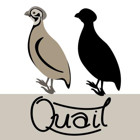 Quail vector illustration style Flat black silhouette Ilustração