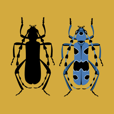 Beetle vector illustration style Flat black silhouette set