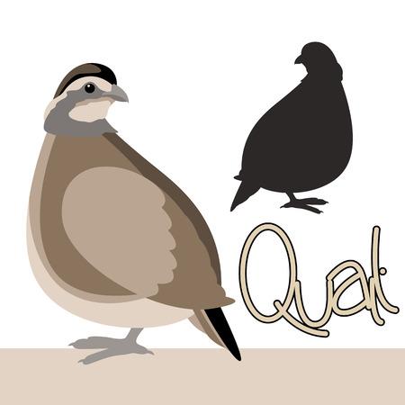 鳥ウズラ ベクトル図スタイル フラット ブラック シルエット