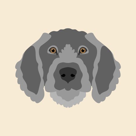 Pointer dog face vector illustration style Flat side front Illustration