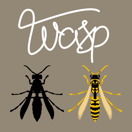 Wasp vector illustration style Flat black silhouette set