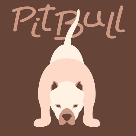 Pitbull terrier vector illustration style flat front side