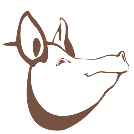 oink: Pig head illustration.