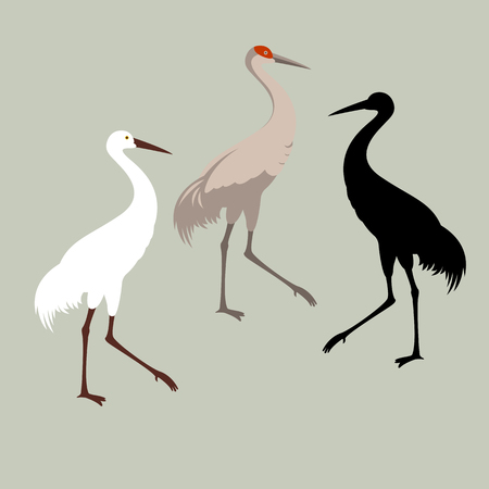 Crane bird vector illustration style flat black silhouette Illustration