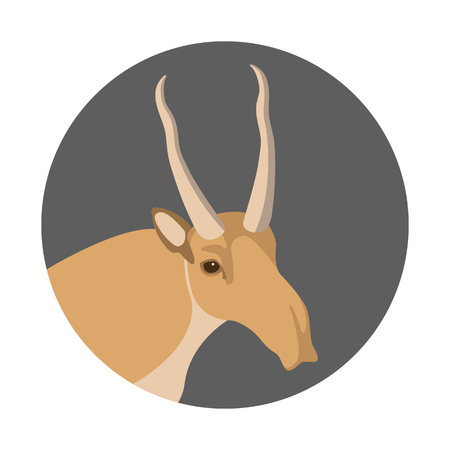 Saiga head vector illustration on white background. Stock Vector - 84950234