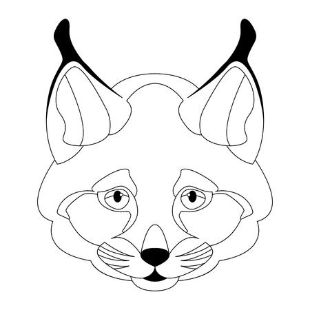 lynx face vector illustration line drawing