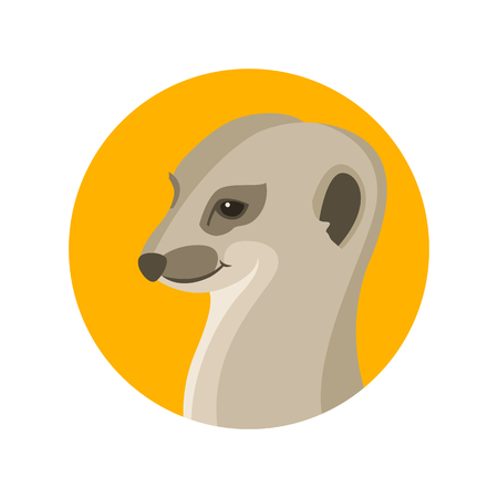 suricata vector illustration style flat profile side