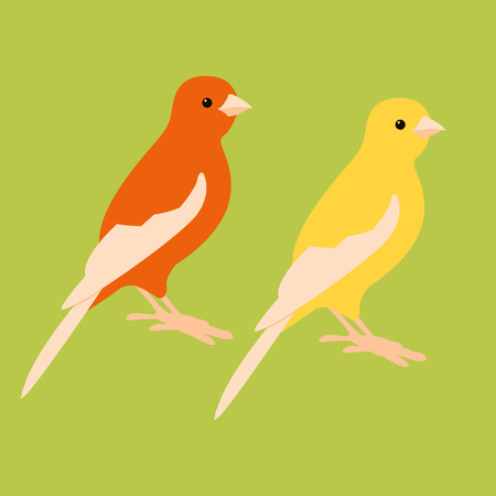 canary bird vector illustration style flat profile side