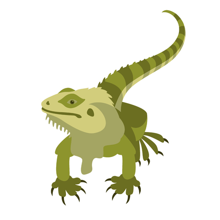 Lizard cartoon illustration icon 向量圖像