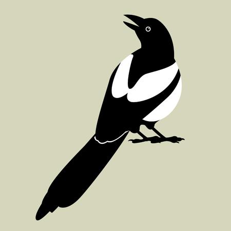 Elster Vektor-Illustration Stil flach