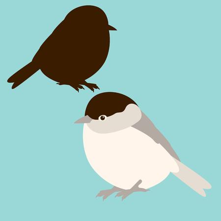 Bird tit