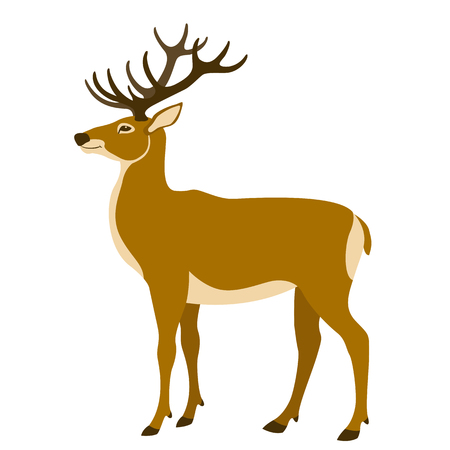 black and white: Deer vector illustration flat style
