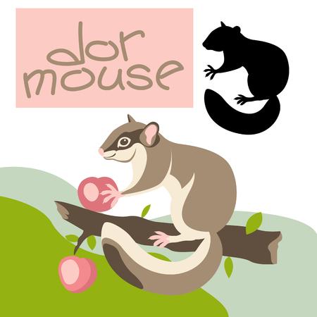 Dormouse illustration.