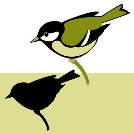 Bird illustration.