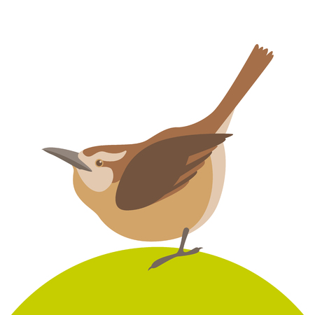 small bird  vector illustration flat style profile side