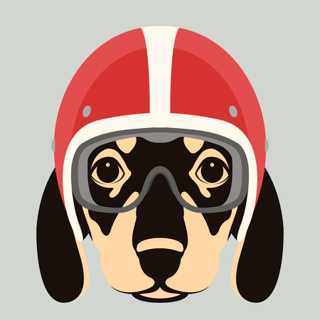dog face in motorcycle helmet vector illustration flat style