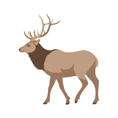 big deer vector illustration flat style  profile side