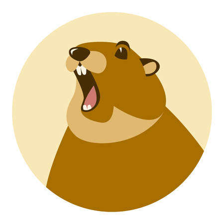 groundhog head  vector illustration flat style front view