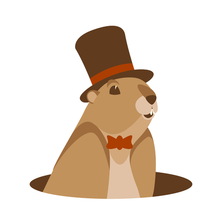 groundhog  in hat  head vector illustration flat style front view