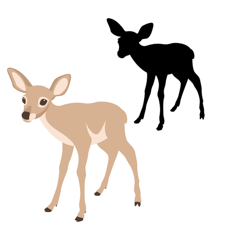 young deer  black silhouette vector illustration flat style profile side