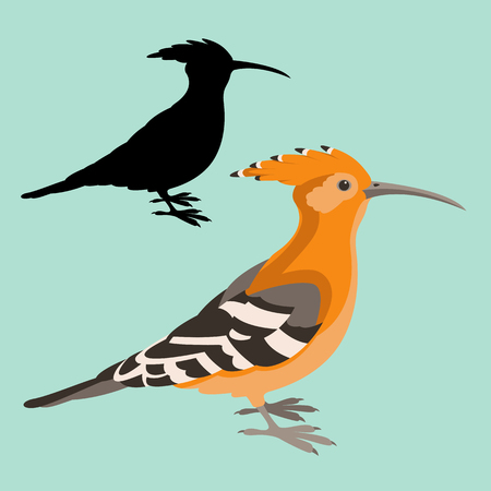 Hoopoe bird vector illustration flat style black silhouette profile view