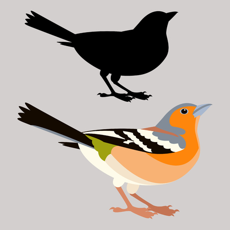Finch bird vector illustration flat style black silhouette profile view.