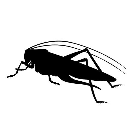 Grasshopper green vector illustration. Black silhouette profile side.