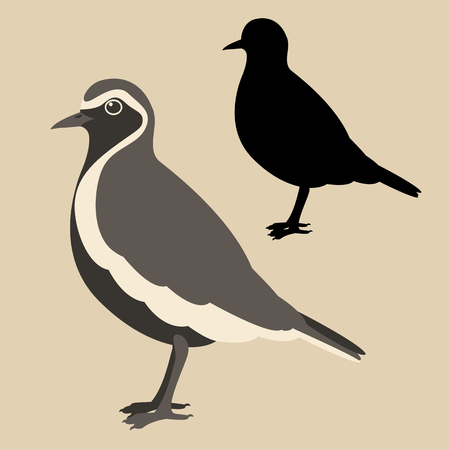 plover bird vector illustration flat style black silhouette set 向量圖像
