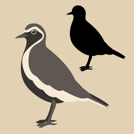 plover bird vector illustration flat style black silhouette set Illustration