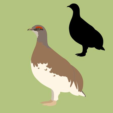 quail  bird vector illustration flat style black silhouette set Ilustração