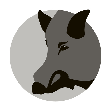 boar head vector illustration flat style