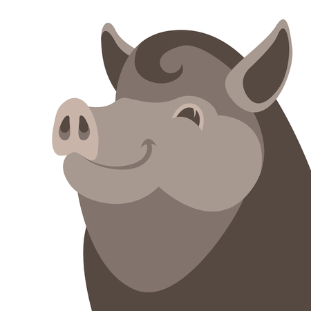Boar wild head face vector illustration flat style