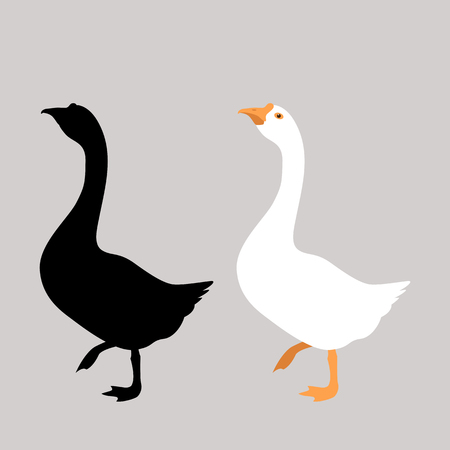 Goose vector illustration. Flat style, front side black silhouette.