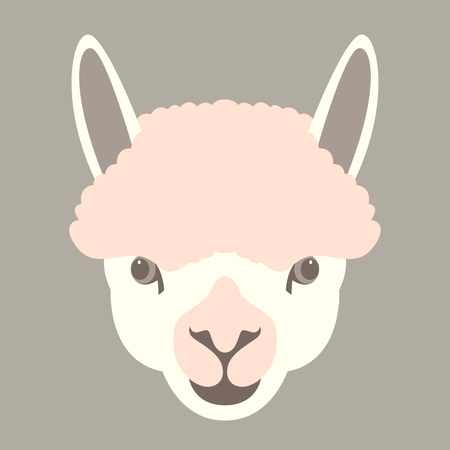 Lama face vector illustration. Flat style, front side.