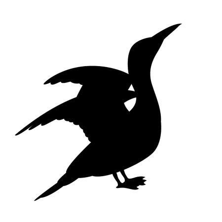 Cormorant white vector illustration black silhouette profile side.