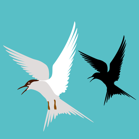 tern   vector illustration flat style    profile side black silhouette Vectores